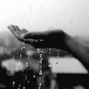 Православные взмолились о дожде