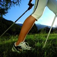 Финская ходьба с палками доступна для всех омичей