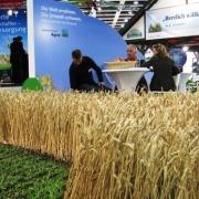 Омский урожай покажут на Сибирской ярмарке