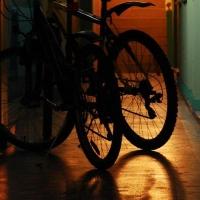 Омичам предлагают прокатиться на велосипедах ночью