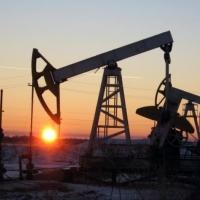 Четыре нефтяных месторождения в Омской области выставлены на торги