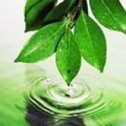 Эффективность природоохранной деятельности омского водоканала подтверждают надзорные органы