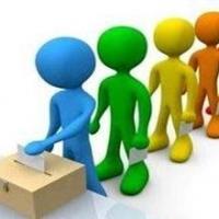 «Яблоко» и «Партию Роста» полностью сняли с выборов в Омске
