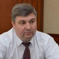 Стрельцов предложил восстановить работу по увеличению территории Омска на 50 км