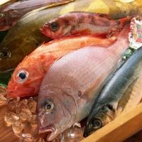 """В омском """"Магните"""" могли продавать испорченные мясо и рыбу"""