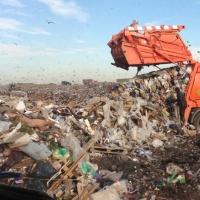 С улиц Омска убрали 55 тыс тонн пыли
