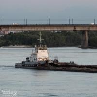 Омский теплоход врезался в берег Иртыша из-за пьяного капитана