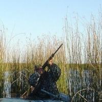 Житель Омского района отработает 150 часов за отстрел лебедя