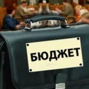 Областной бюджет получил 44 млн за счет государственной собственности