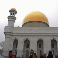 Депутат и местные жители выступают против строительства мечети в Омской области