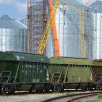 21 хозяйство Омской области будет экспортировать зерно в Китай