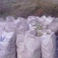 Банда омичей наворовала кукурузы на 22 тысячи рублей