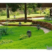 Как привести в порядок газон возле дома