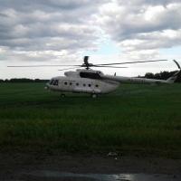 На калачинское поле у трассы Омск-Новосибирск приземлился вертолет