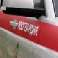 В Омске устроили «Перехват» из-за угона Peugeot