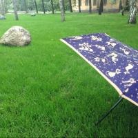 Сегодня в Омске ожидается ливень
