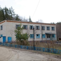 Из-за инфекции в одном детском лагере под Омском проверят все остальные