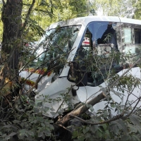 В Омске маршрутка врезалась в дерево: пять пострадавших