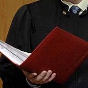 Директор агрофирмы получил приговор за кредитный долг в 60 миллионов