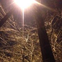 Улицу на окраине Омска теперь освещают сверхсовременные фонари