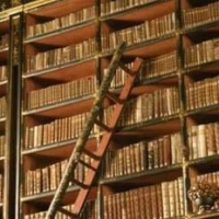 Для омичей открылась библиотека под открытым небом