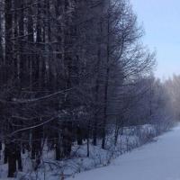 В Тарском районе от переохлаждения скончался сторож  базы отдыха