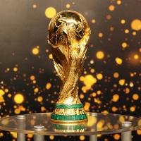 В Омск впервые привезут кубок FIFA