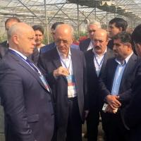 В Омской области появятся иранские лекарства и косметика