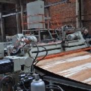 Омское предприятие «Сибирский лес» развивает производство шпона и фанеры