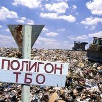 Последствия несвоевременной утилизации ТБО