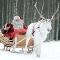 Резиденции Санта-Клауса и Деда Мороза: различия и сходства