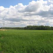 Доходы от земли в Омске упали на 864 миллиона