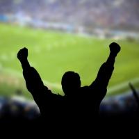 Возможности футбольного болельщика