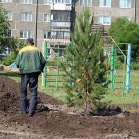 Обновленный сквер Героев-авиаторов в Омске торжественно откроют через неделю