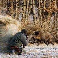 Суд оставил на свободе омского бизнесмена, обвиняемого в убийстве егеря на охоте