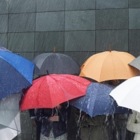 Омский пленэр и концерт на площади Победы перенесли из-за дождя