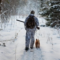 Омских охотников, запоздавших с отчетами о добыче, оштрафуют