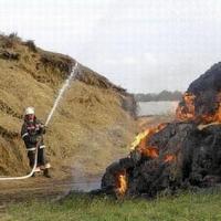 24-летний житель Омской области получил «условно» за поджог соседского сена