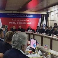 Омская область планирует поставлять Ирану сельхозпродукцию, а получать - фрукты и орехи