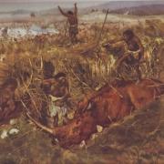 Возможно, в скором будущем появятся художественные изделия из бивня мамонта, найденного в Саратове