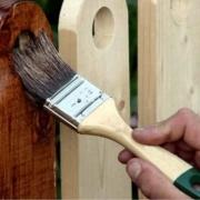 Древесный грибок и способы защиты древесины