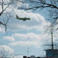 Авиакомпания «Сибирь» не платила за прогноз погоды в Омске не из-за отсутствия средств