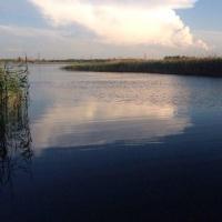 Омские водные биоресурсы уходят на экспорт в Китай и Испанию