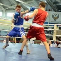 Турнир по боксу Алексея Тищенко внесен в планы Федерации бокса России