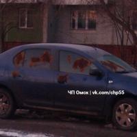 Кто-то продолжают измазывать омские машины коричневой субстанцией