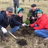 Омские татары высадили в парке колючую аллею «Любви и дружбы»