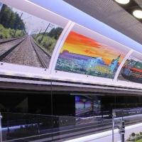 В Омск прибудет железнодорожный передвижной экологический комплекс «Природа без границ»