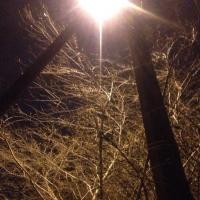 Омская прокуратура требует через суд установить освещение в поселке Николаевка
