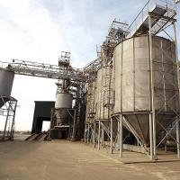 Почти треть от общих объемов зерна РФ сформировали омские аграрии