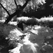 """В """"Робе"""" снова выставят черно-белые серебряные фотографии Сергея Сокруты"""